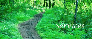 Lynea Services